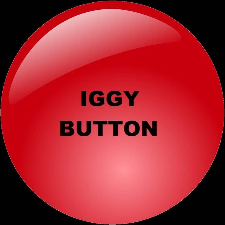 iggy button.jpg
