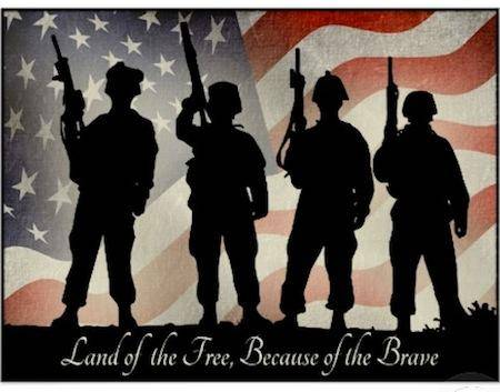 Land of the Free, because of the Brave.jpg