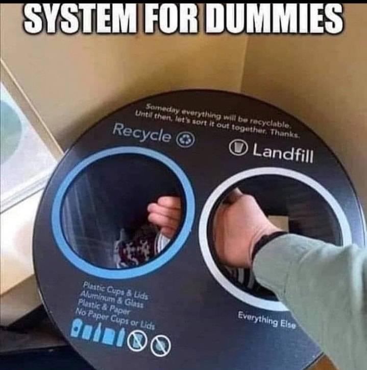 SYSTEM.FOR.DUMMIES.jpg