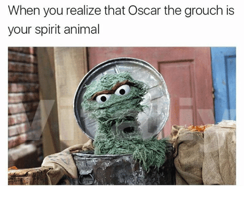 when-you-realize-that-oscar-the-grouch-is-your-spirit-21675926.png