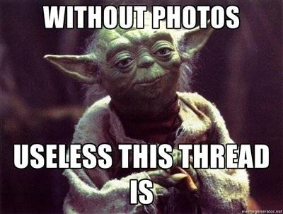 yoda worthless pics.jpg